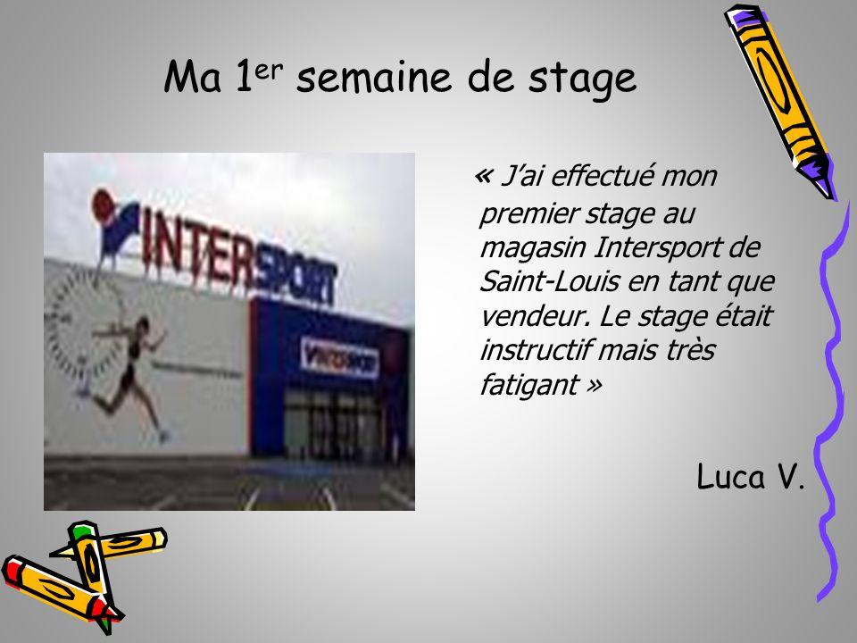 Ma 1 er semaine de stage « Jai effectué mon premier stage au magasin Intersport de Saint-Louis en tant que vendeur. Le stage était instructif mais trè