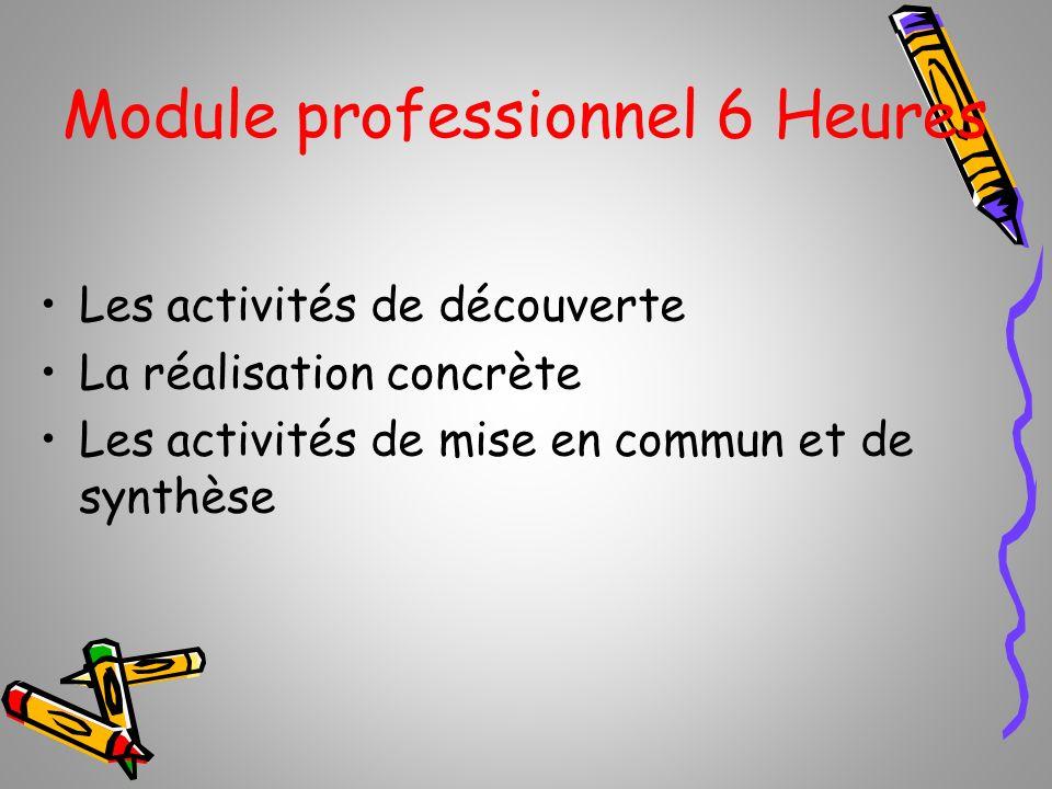 Module professionnel 6 Heures Les activités de découverte La réalisation concrète Les activités de mise en commun et de synthèse