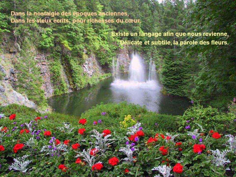 Le langage des fleurs Que celui qui possède un don si précieux, Dun encens éternel en rende grâce à Dieu. Il voit tous les ressorts qui meuvent lunive