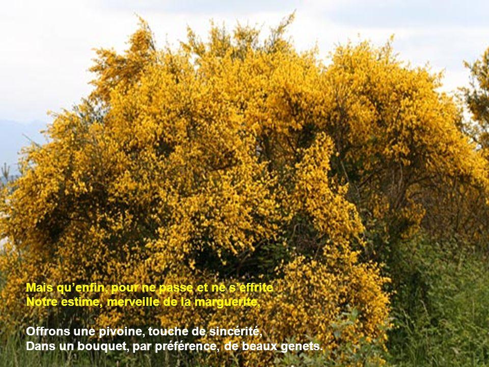 Reçois, pour reconnaissance, léclatant dahlia, Sur fond dune amitié dévouée de volubilis; Et unis, du parfum de lamitié quest le lilas, La plus sincèr