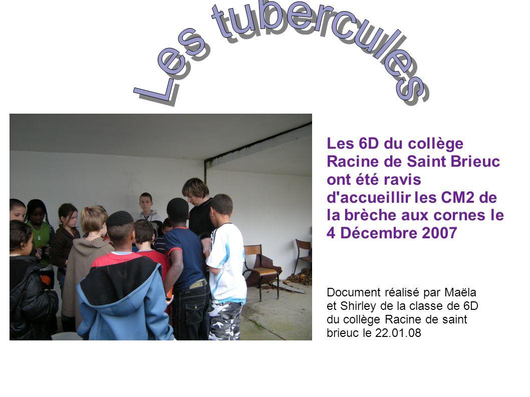 Les 6D du collège Racine de Saint Brieuc ont été ravis d accueillir les CM2 de la brèche aux cornes le 4 Décembre 2007 Document réalisé par Maëla et Shirley de la classe de 6D du collège Racine de saint brieuc le 22.01.08