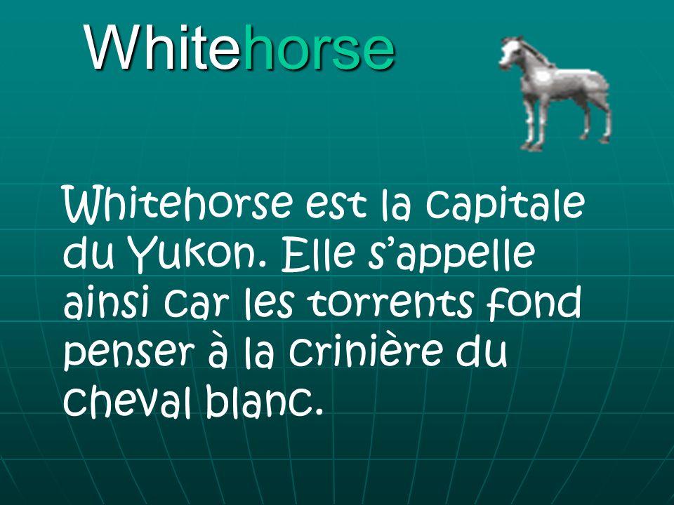 Whitehorse Whitehorse est la capitale du Yukon. Elle sappelle ainsi car les torrents fond penser à la crinière du cheval blanc.