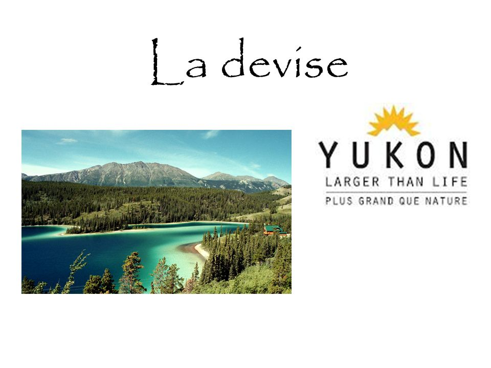 Le symbole floral du Yukon est lépilobe et le corbeau est celui du symbole aviaire.