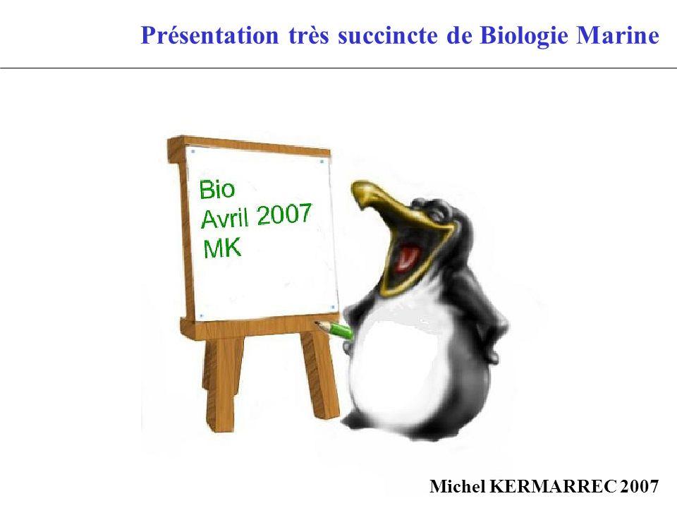 Présentation très succincte de Biologie Marine Michel KERMARREC 2007