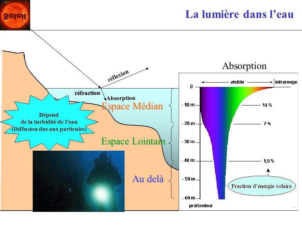 La lumière dans leau Espace Médian Espace Lointain Au delà Dépend de la turbidité de leau (Diffusion due aux particules) Absorption réflexion réfracti