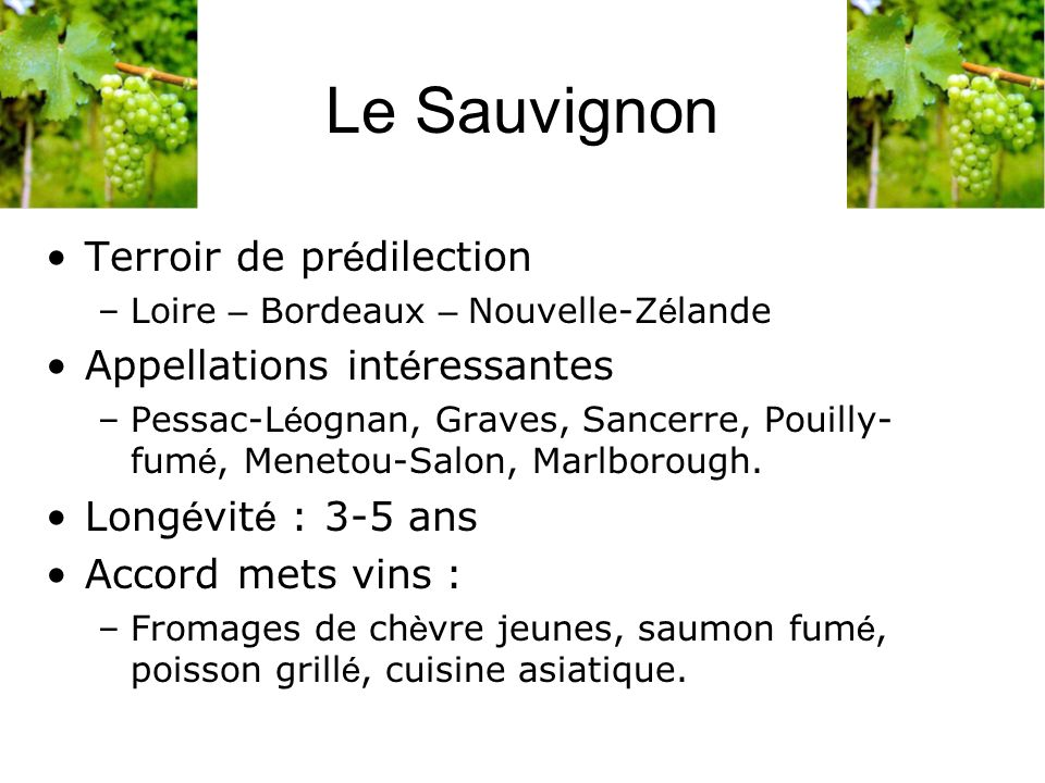 Le Sauvignon Terroir de pr é dilection –Loire – Bordeaux – Nouvelle-Z é lande Appellations int é ressantes –Pessac-L é ognan, Graves, Sancerre, Pouill