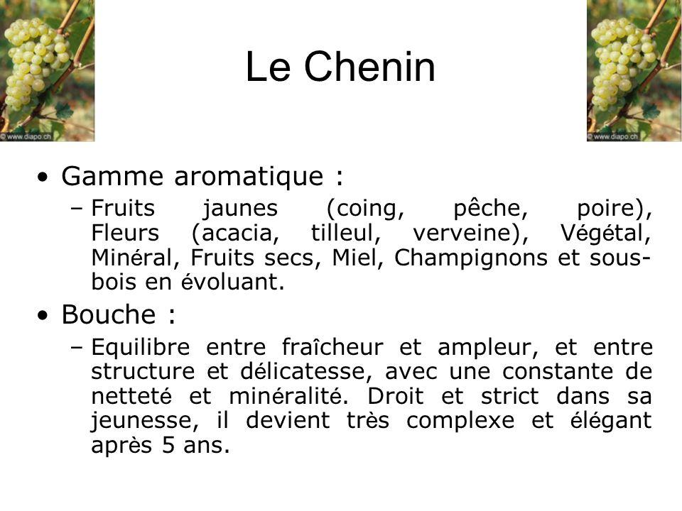 Le Chenin Gamme aromatique : –Fruits jaunes (coing, pêche, poire), Fleurs (acacia, tilleul, verveine), V é g é tal, Min é ral, Fruits secs, Miel, Cham