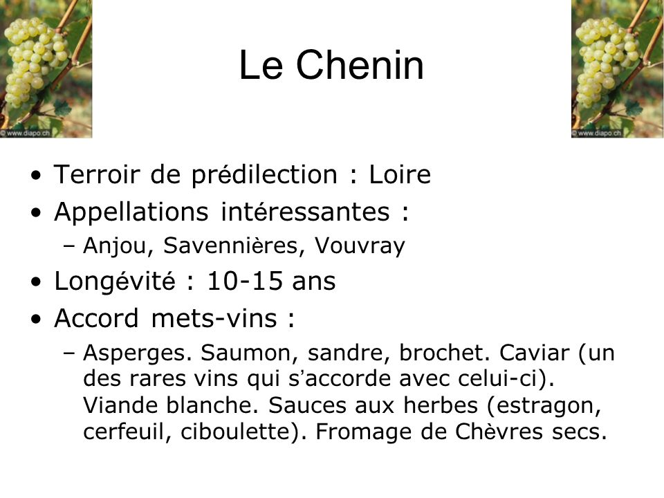 Terroir de pr é dilection : Loire Appellations int é ressantes : –Anjou, Savenni è res, Vouvray Long é vit é : 10-15 ans Accord mets-vins : –Asperges.