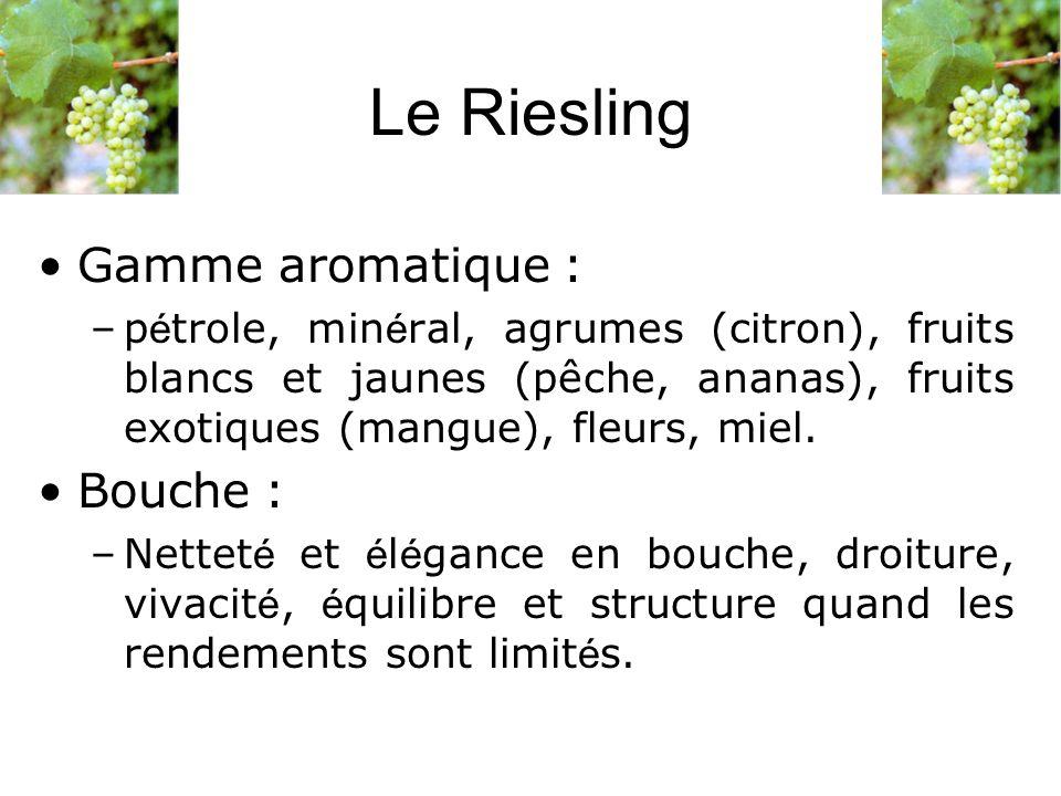 Le Riesling Gamme aromatique : –p é trole, min é ral, agrumes (citron), fruits blancs et jaunes (pêche, ananas), fruits exotiques (mangue), fleurs, mi