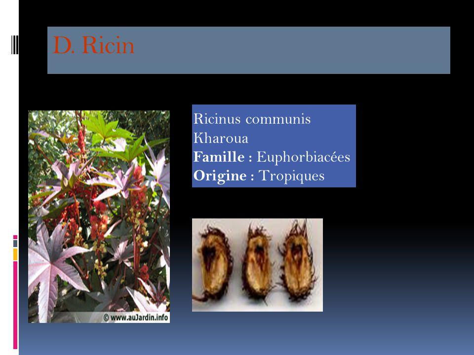 C. Phytolaque( Phytolacca americana) Raisin d'Amérique Principes actifs : un saponoside, le phytolaccoside B; une phytohemagglutine (lectine). Soif Na