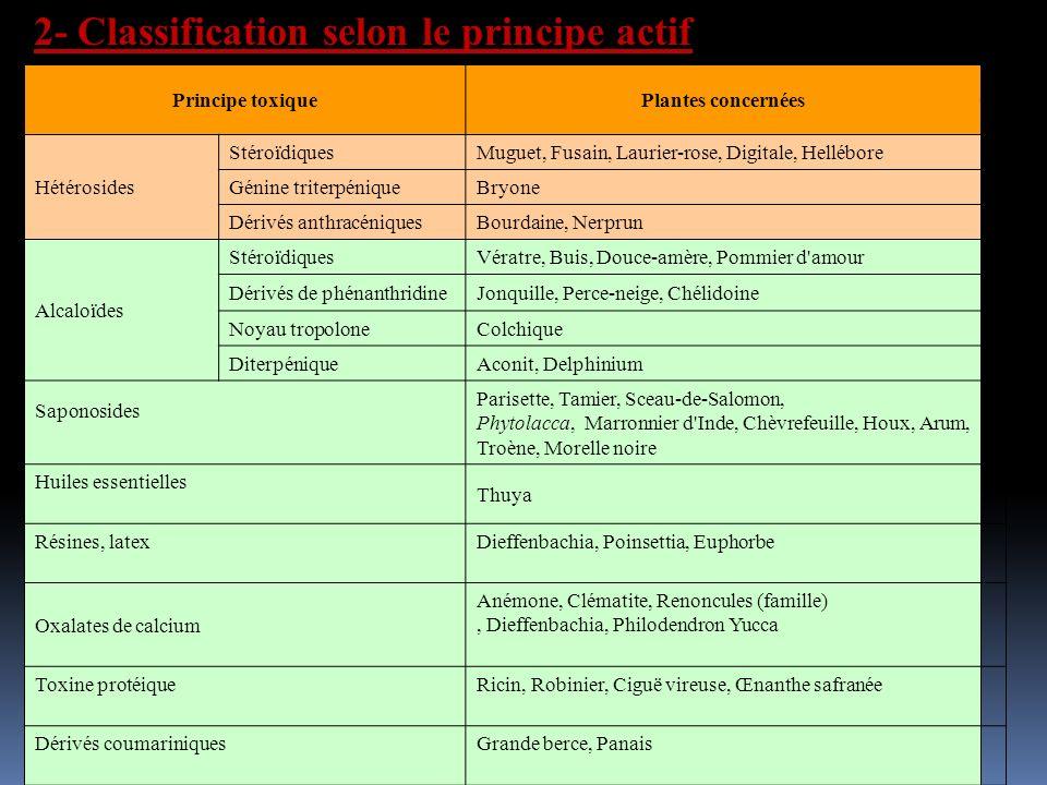 2- Classification selon le principe actif Principe toxiquePlantes concernées Hétérosides StéroïdiquesMuguet, Fusain, Laurier-rose, Digitale, Hellébore Génine triterpéniqueBryone Dérivés anthracéniquesBourdaine, Nerprun Alcaloïdes StéroïdiquesVératre, Buis, Douce-amère, Pommier d amour Dérivés de phénanthridineJonquille, Perce-neige, Chélidoine Noyau tropoloneColchique DiterpéniqueAconit, Delphinium Saponosides Parisette, Tamier, Sceau-de-Salomon, Phytolacca, Marronnier d Inde, Chèvrefeuille, Houx, Arum, Troène, Morelle noire Huiles essentielles Thuya Résines, latexDieffenbachia, Poinsettia, Euphorbe Oxalates de calcium Anémone, Clématite, Renoncules (famille), Dieffenbachia, Philodendron Yucca Toxine protéiqueRicin, Robinier, Ciguë vireuse, Œnanthe safranée Dérivés coumariniquesGrande berce, Panais