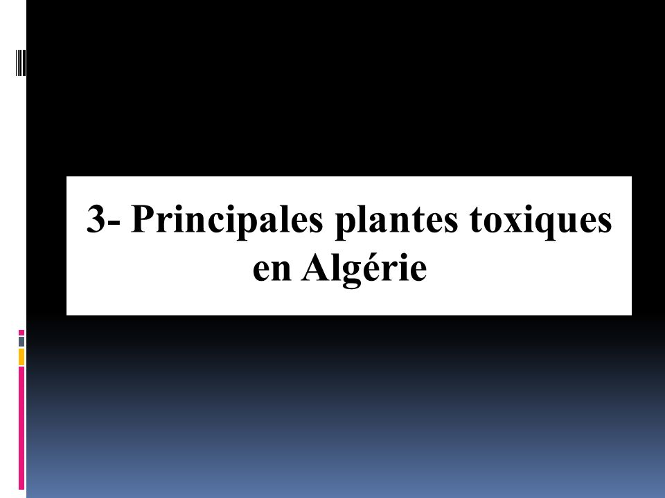 2- Classification selon le principe actif Principe toxiquePlantes concernées Hétérosides StéroïdiquesMuguet, Fusain, Laurier-rose, Digitale, Hellébore