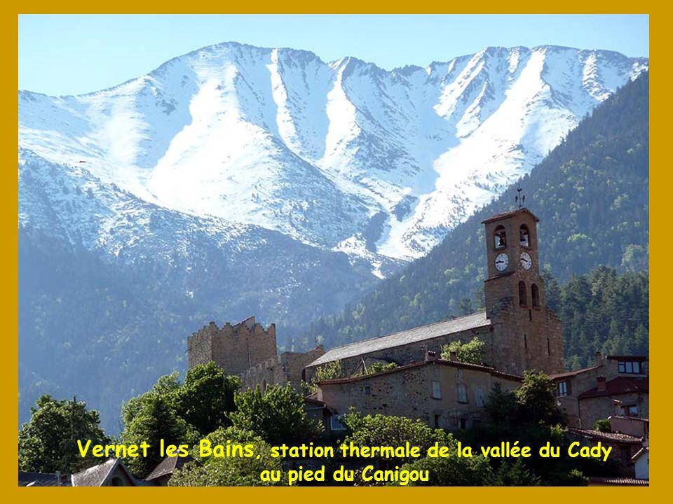 LAbbaye de St Martin du Canigou, fondée au X° s. par Guifred II, conte de Cerdagne, se niche derrière un piton rocheux du massif du Canigou à 1 094 m