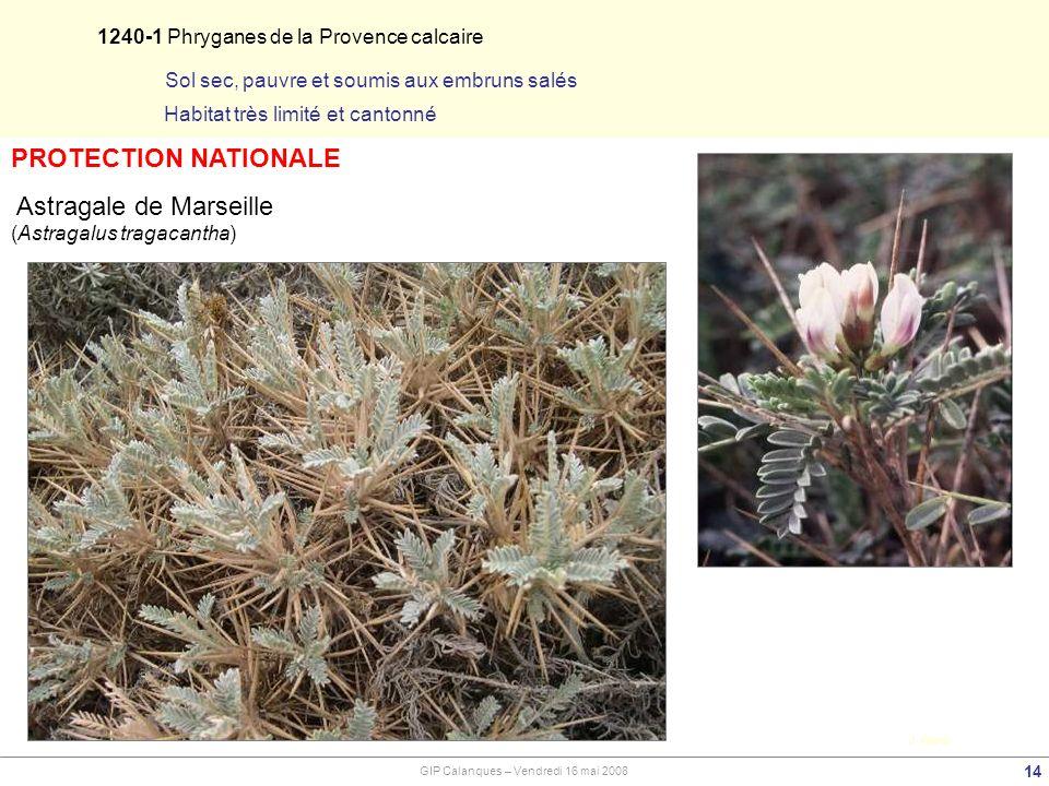 1240-1 Phryganes de la Provence calcaire 14 J. Baret Sol sec, pauvre et soumis aux embruns salés Habitat très limité et cantonné GIP Calanques – Vendr