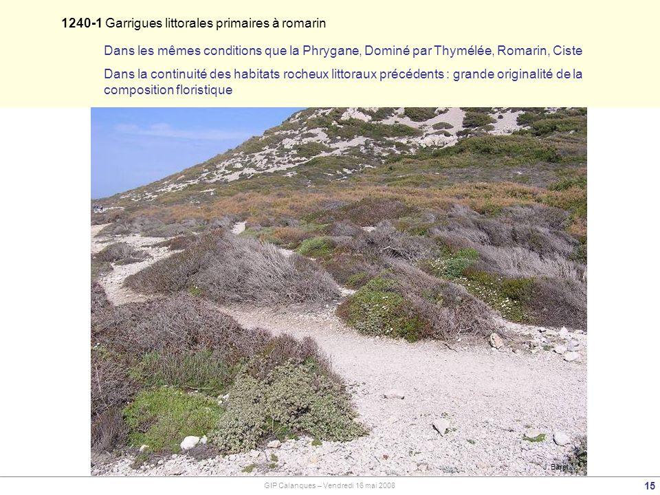 J. Baret 1240-1 Garrigues littorales primaires à romarin 15 Dans les mêmes conditions que la Phrygane, Dominé par Thymélée, Romarin, Ciste Dans la con