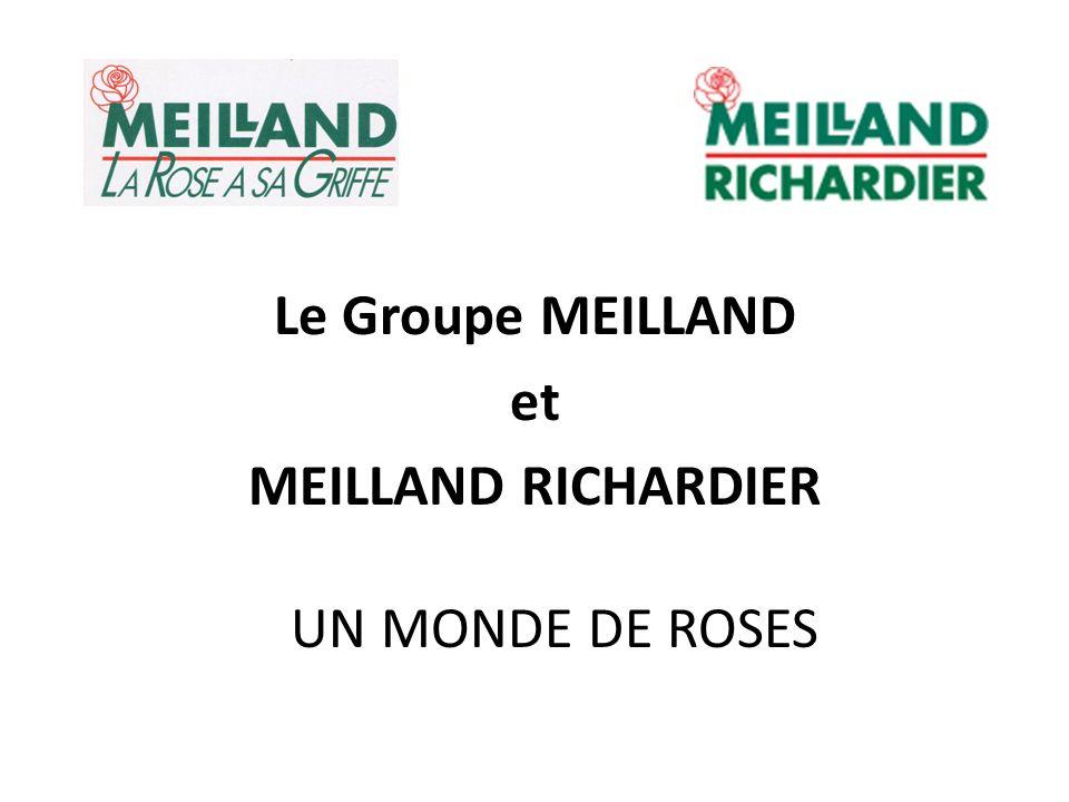 Le Groupe MEILLAND et MEILLAND RICHARDIER UN MONDE DE ROSES