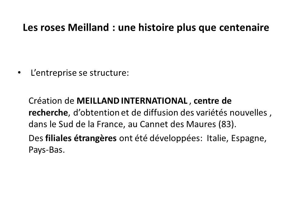 Les roses Meilland : une histoire plus que centenaire Lentreprise se structure: Création de MEILLAND INTERNATIONAL, centre de recherche, dobtention et de diffusion des variétés nouvelles, dans le Sud de la France, au Cannet des Maures (83).