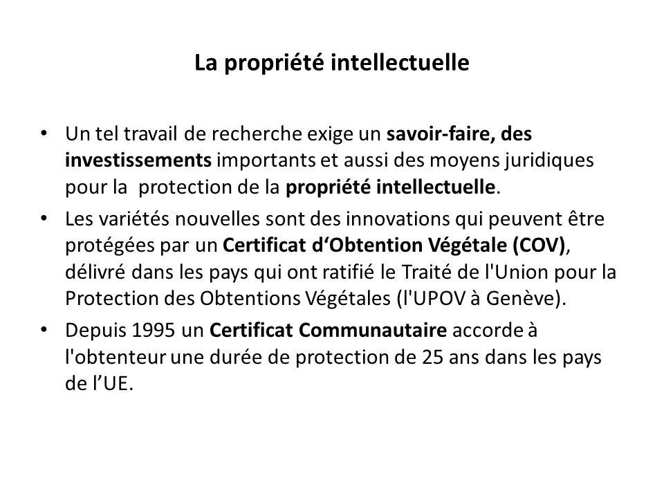 La propriété intellectuelle Un tel travail de recherche exige un savoir-faire, des investissements importants et aussi des moyens juridiques pour la protection de la propriété intellectuelle.