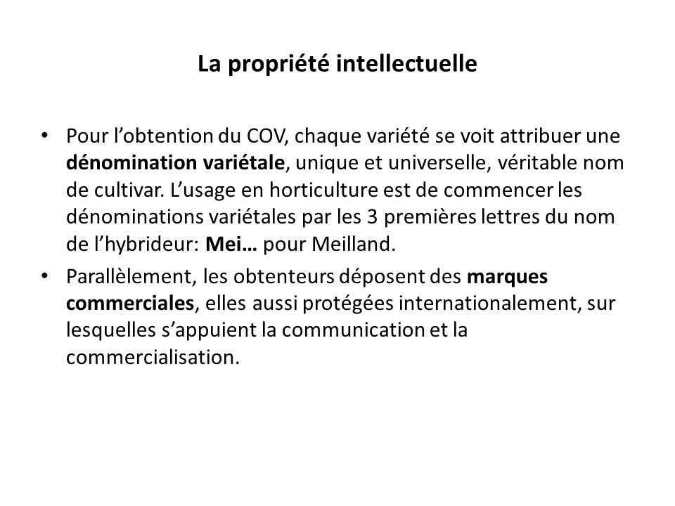 La propriété intellectuelle Pour lobtention du COV, chaque variété se voit attribuer une dénomination variétale, unique et universelle, véritable nom de cultivar.
