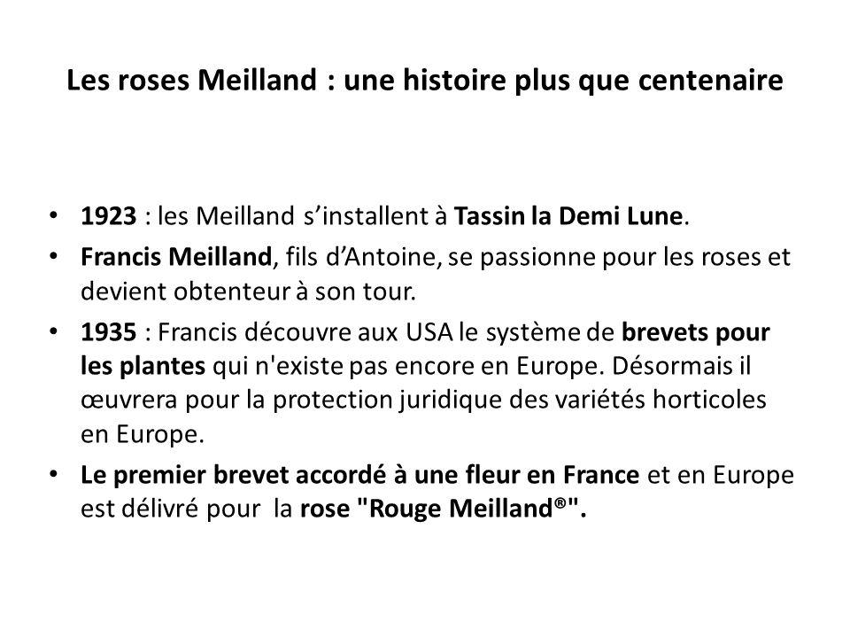 Les roses Meilland : une histoire plus que centenaire 1923 : les Meilland sinstallent à Tassin la Demi Lune. Francis Meilland, fils dAntoine, se passi