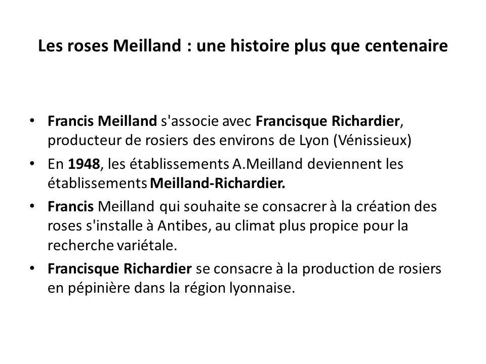 Les roses Meilland : une histoire plus que centenaire Francis Meilland s associe avec Francisque Richardier, producteur de rosiers des environs de Lyon (Vénissieux) En 1948, les établissements A.Meilland deviennent les établissements Meilland-Richardier.