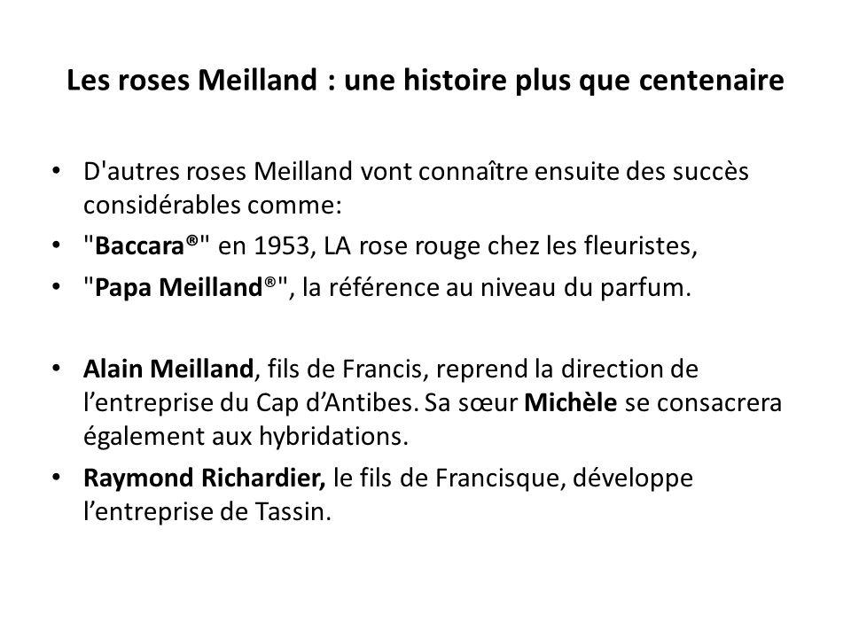Les roses Meilland : une histoire plus que centenaire D autres roses Meilland vont connaître ensuite des succès considérables comme: Baccara® en 1953, LA rose rouge chez les fleuristes, Papa Meilland® , la référence au niveau du parfum.
