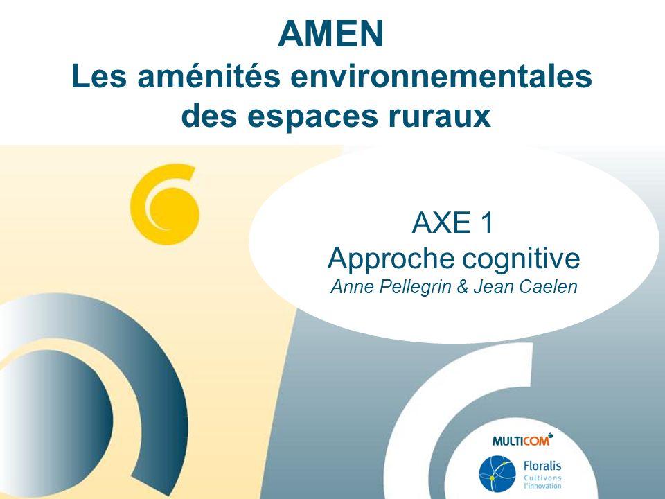 AXE 1 Approche cognitive Anne Pellegrin & Jean Caelen AMEN Les aménités environnementales des espaces ruraux