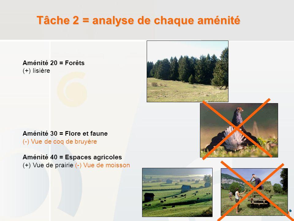 Tâche 2 = analyse de chaque aménité Aménité 20 = Forêts (+) lisière Aménité 30 = Flore et faune (-) Vue de coq de bruyère Aménité 40 = Espaces agricol