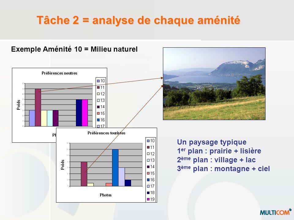 Tâche 2 = analyse de chaque aménité Exemple Aménité 10 = Milieu naturel Un paysage typique 1 er plan : prairie + lisière 2 ème plan : village + lac 3