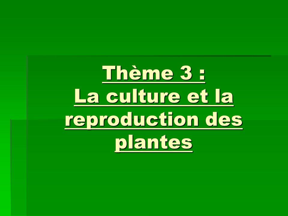Thème 3 : La culture et la reproduction des plantes