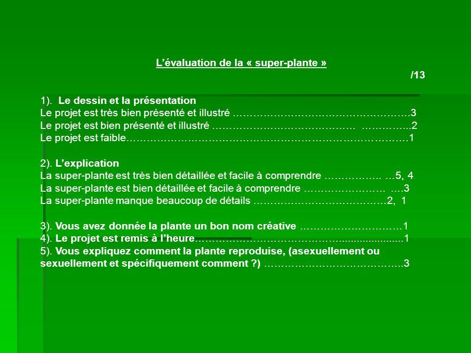 Lévaluation de la « super-plante » /13 1). Le dessin et la présentation Le projet est très bien présenté et illustré …………………………………………….3 Le projet est