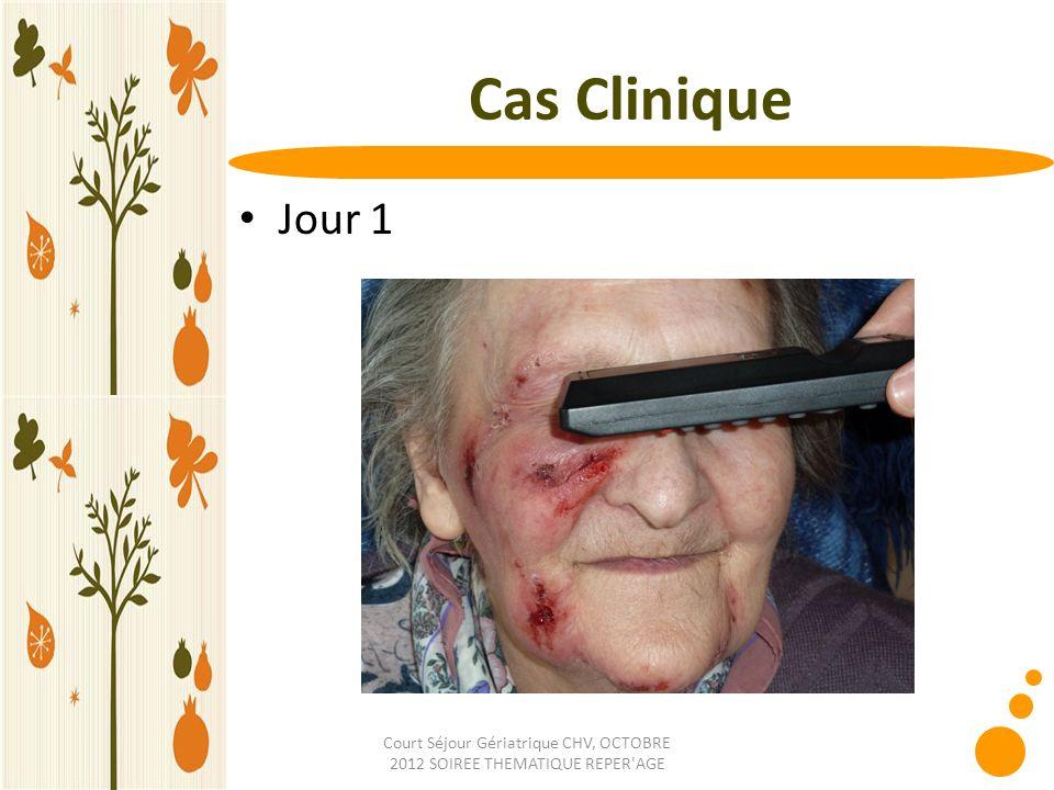 Court Séjour Gériatrique CHV, OCTOBRE 2012 SOIREE THEMATIQUE REPER'AGE Cas Clinique Jour 1