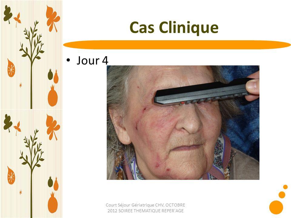 Court Séjour Gériatrique CHV, OCTOBRE 2012 SOIREE THEMATIQUE REPER'AGE Cas Clinique Jour 4