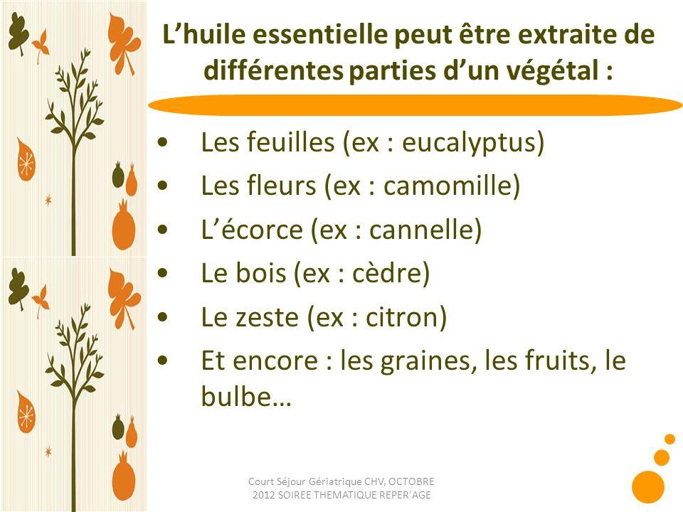Court Séjour Gériatrique CHV, OCTOBRE 2012 SOIREE THEMATIQUE REPER'AGE Lhuile essentielle peut être extraite de différentes parties dun végétal : Les