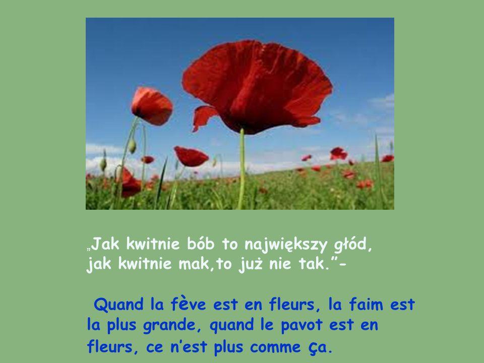 , Św.Jan niesie jagód dzban – Saint Jean apporte plein de fruits rouges.