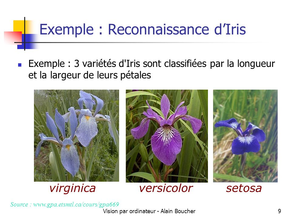 Vision par ordinateur - Alain Boucher10 Reconnaissance des formes Nous avons donc trois classes Iris virginica, Iris versicolor, Iris setosa 1, 2 et 3 Chaque fleur est évaluée par deux descripteurs Longueur des pétales, largeur des pétales Il y a des différences entre les longueurs et largeurs des pétales des différentes variétés d Iris.