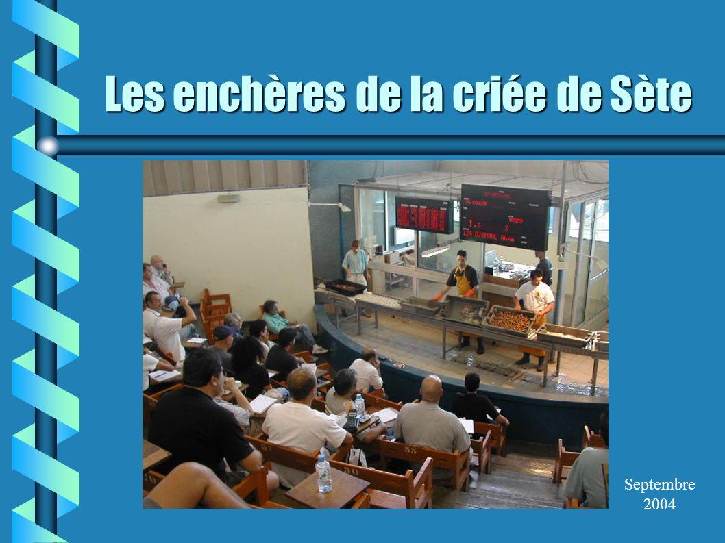 Les enchères de la criée de Sète Septembre 2004
