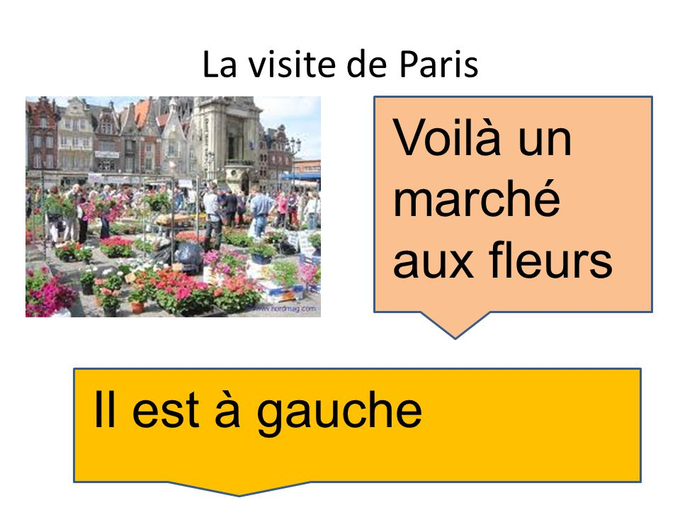 La visite de Paris Voilà un marché aux fleurs Il est à gauche