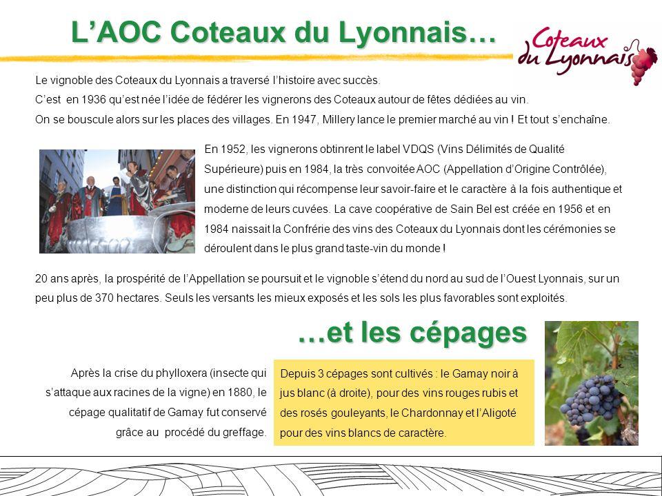 Les spécificités de la région : les sols… Tradition oblige, les vignerons mettent un point dhonneur à choisir les terrains de lOuest Lyonnais les mieux exposés, privilégiant la qualité plutôt que la quantité.