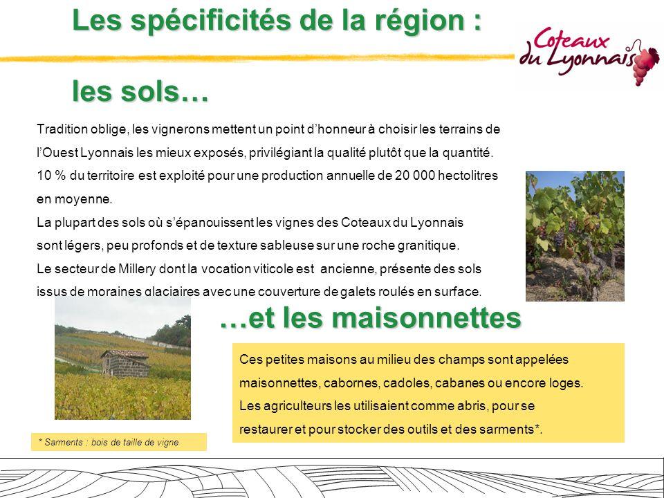 Les spécificités de la région : les sols… Tradition oblige, les vignerons mettent un point dhonneur à choisir les terrains de lOuest Lyonnais les mieu