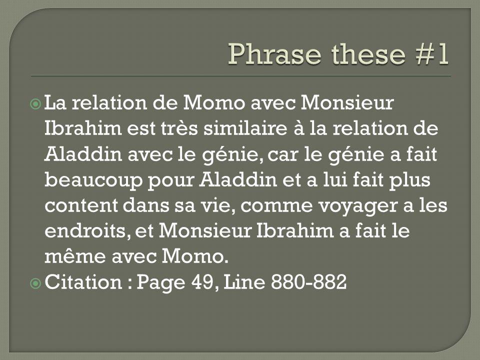 La relation de Momo avec Monsieur Ibrahim est très similaire à la relation de Aladdin avec le génie, car le génie a fait beaucoup pour Aladdin et a lu