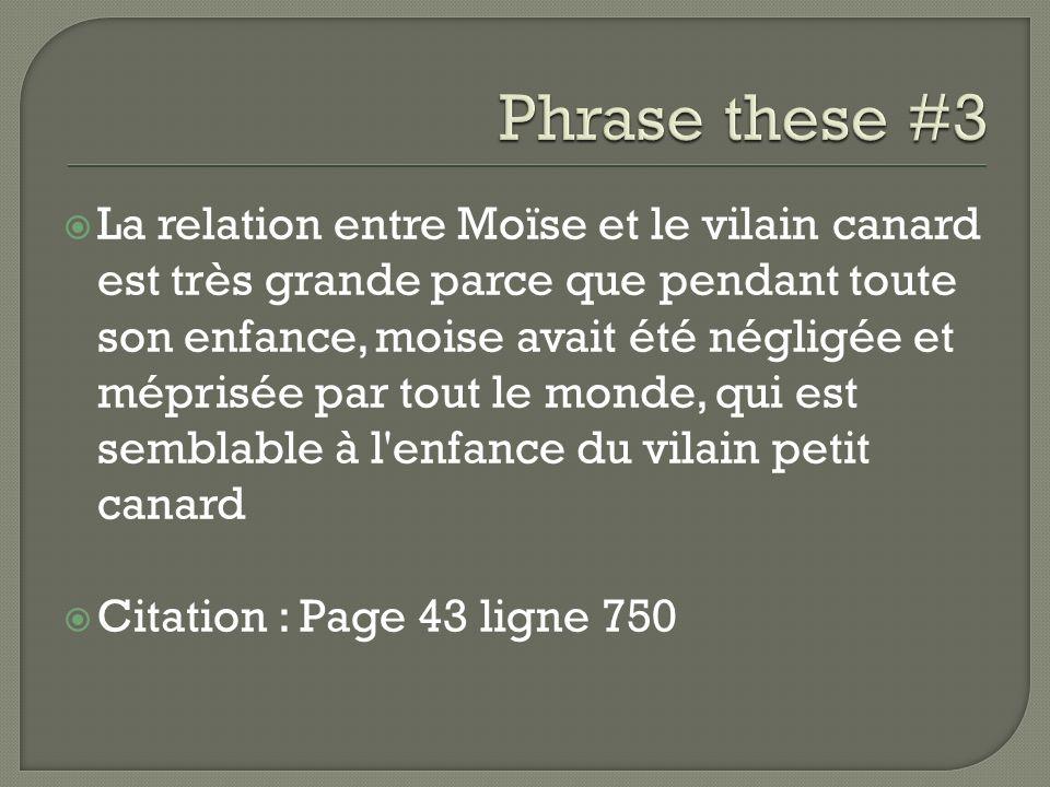 La relation entre Moïse et le vilain canard est très grande parce que pendant toute son enfance, moise avait été négligée et méprisée par tout le mond