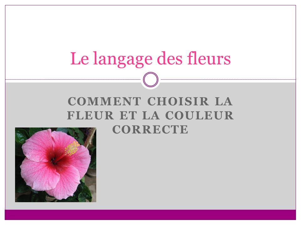 COMMENT CHOISIR LA FLEUR ET LA COULEUR CORRECTE Le langage des fleurs