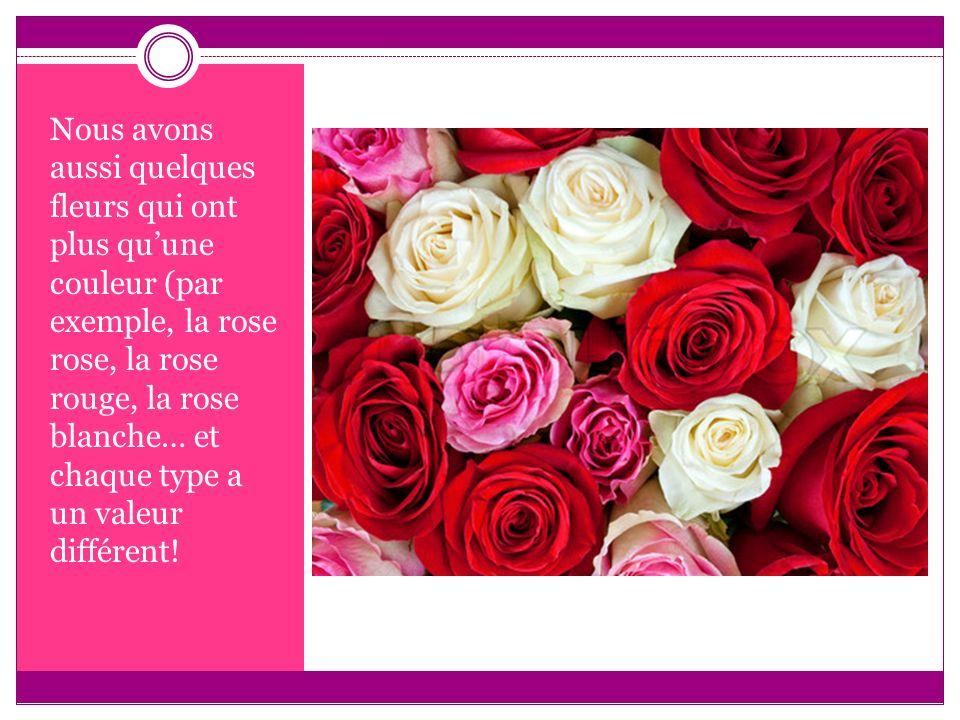 Nous avons aussi quelques fleurs qui ont plus quune couleur (par exemple, la rose rose, la rose rouge, la rose blanche… et chaque type a un valeur dif