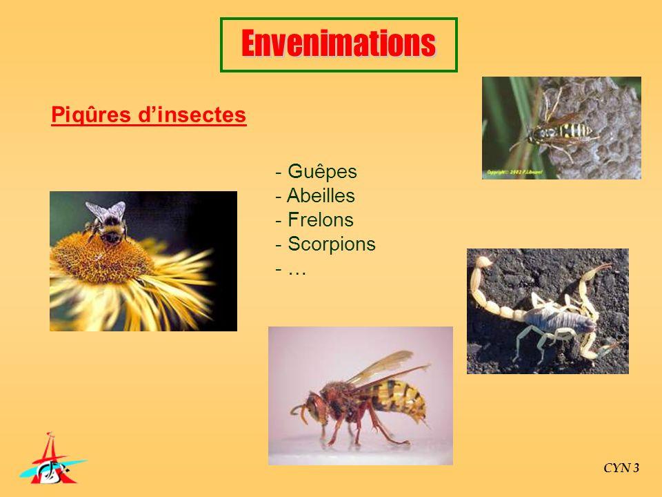 CYN 3 Piqûres dinsectes - Guêpes - Abeilles - Frelons - Scorpions - …