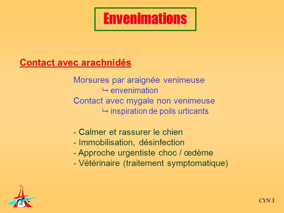 CYN 3 Contact avec arachnidés Morsures par araignée venimeuse envenimation Contact avec mygale non venimeuse inspiration de poils urticants - Calmer e