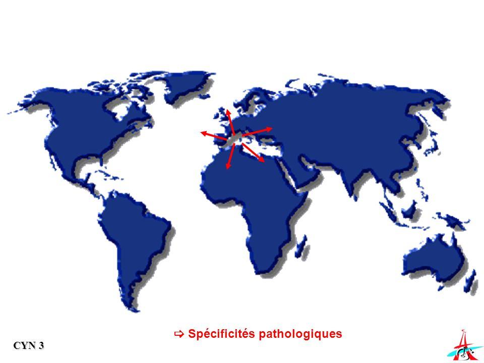 Spécificités pathologiques CYN 3