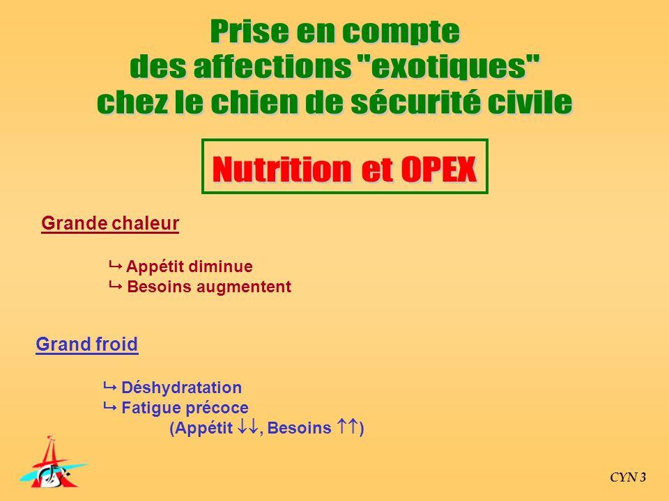 CYN 3 Grande chaleur Appétit diminue Besoins augmentent Grand froid Déshydratation Fatigue précoce (Appétit, Besoins )