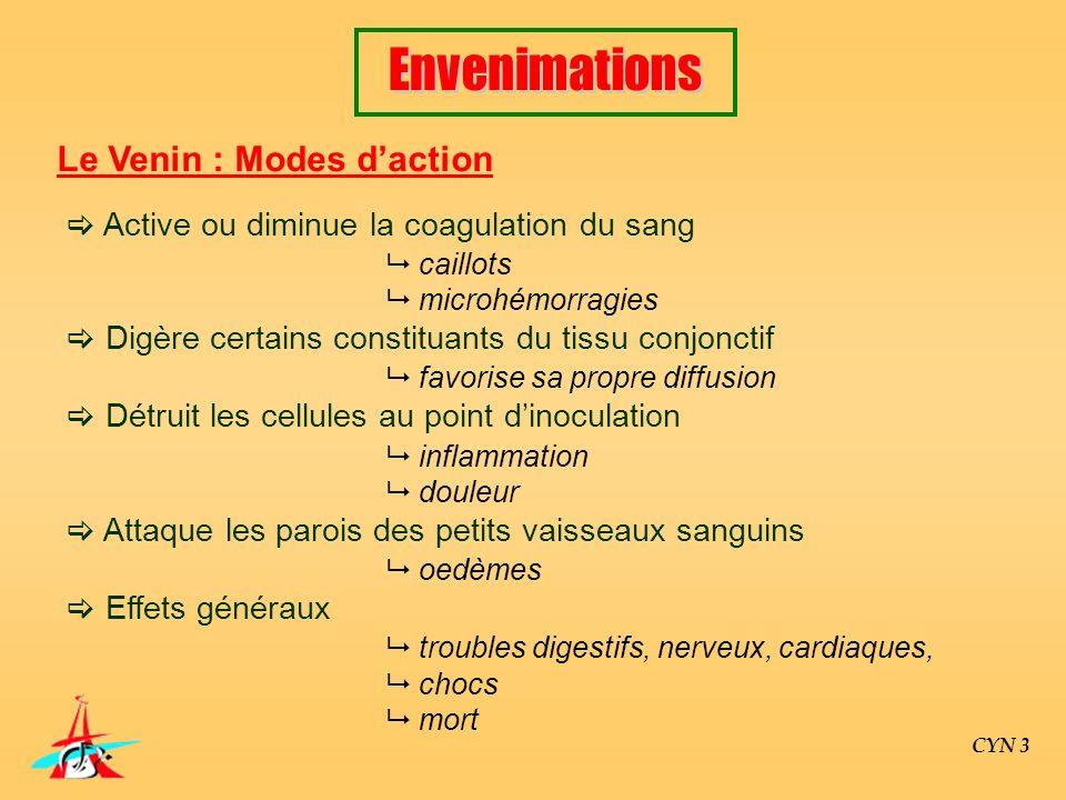 CYN 3 Le Venin : Modes daction Active ou diminue la coagulation du sang caillots microhémorragies Digère certains constituants du tissu conjonctif fav
