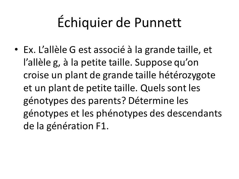 Échiquier de Punnett Ex. Lallèle G est associé à la grande taille, et lallèle g, à la petite taille. Suppose quon croise un plant de grande taille hét